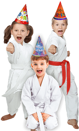 Martial Arts Birthday Party for Kids in Angleton TX - Birthday Punches Page Banner